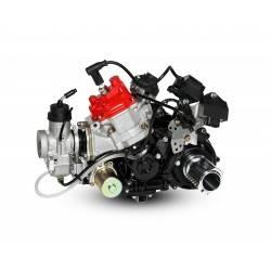 Motor Rotax 125 Max DD2 Evo
