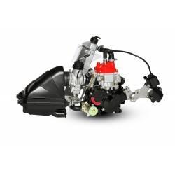 Motor Rotax 125 Junior Max Evo