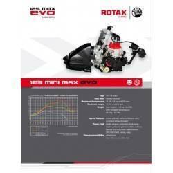 Motor Rotax Mini Max Evo