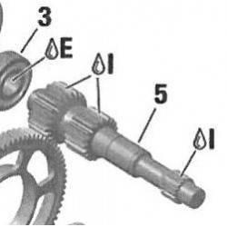 Eje Primario Rotax DD2 24/19T Nº5